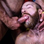 Raging-Stallion-Drake-Masters-and-James-Stevens-hairy-guys-cum-facial-14-150x150 Hairy Muscle Bear Drake Masters and Otter James Stevens Swap Cum Facials